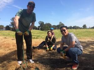 Tree Planting 2014